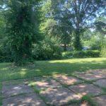frost backyard 2